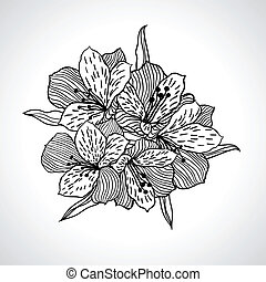 isolated., makro, virág, fekete, orhidea