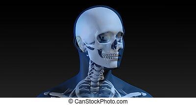 játékkockák, röntgenográfia, fürkész