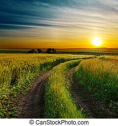 jó, eredet, mező, zöld, koszos, napnyugta, út