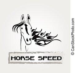 jel, ló, gyorsaság