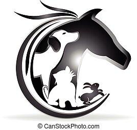 jel, ló, kutya, üregi nyúl, macska
