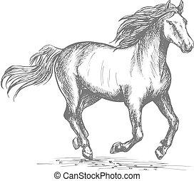 jelkép, sport, versenyzés, ló, lovas