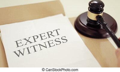 jogi, tanú, írott, árverezői kalapács, szakértő, okmányok
