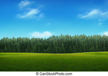 kék ég, fiatal, táj, zöld erdő