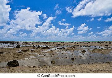 kék ég, tengerpart, elhomályosul, hintáztatni