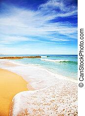 kék ég, tengerpart, homokos