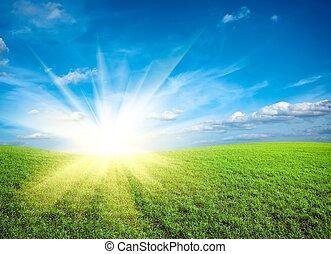 kék ég, zöld terep, napnyugta, alatt, friss, fű