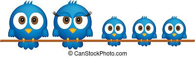 kék, család, madarak