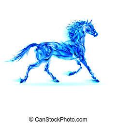 kék, elbocsát, horse.