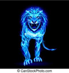 kék, elbocsát, oroszlán