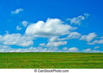 kék, elhomályosul, ég, zöld terep, fehér
