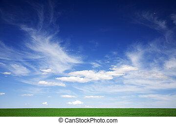 kék, elhomályosul, eredet, zöld terep, fehér, ég