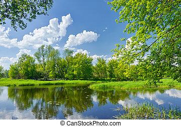 kék, elhomályosul, narew, eredet, ég, folyó parkosít