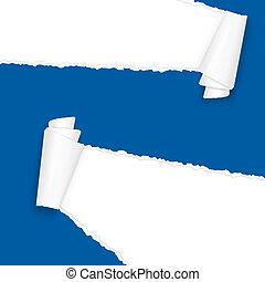 kék, elszakadt, dolgozat, nyílik