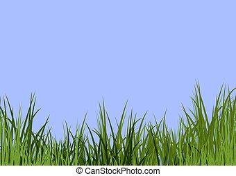 kék, fű, ég, &