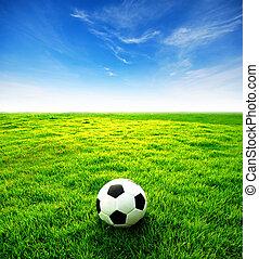 kék, futball, sport, stadion, labdarúgás, ég terep, játék, zöld háttér, tervezés, fű
