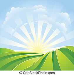 kék, idillikus, megfog, napfény, ég, küllők, zöld