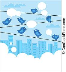 kék, madarak, hálózat, háttér, társadalmi