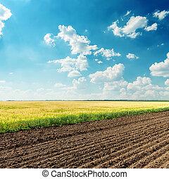 kék, megfog, ég, mély, felhős, alatt, mezőgazdaság