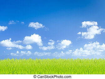 kék, megfog, ég, zöld háttér, fű
