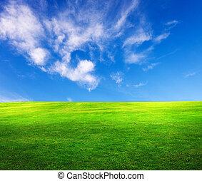 kék, mező fű, ég