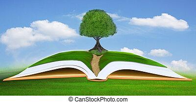 kék, nagy fa, könyv, nyílik, ég