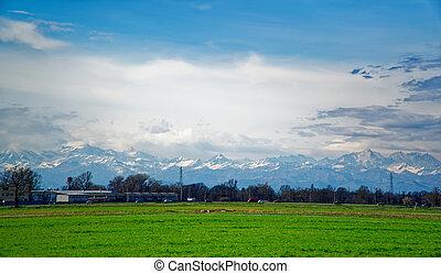 kék, nap, ég terep, zöld, alatt, friss, fű, beam.