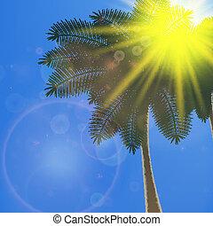 kék, nyár, kitörés, nap, ég, háttér.