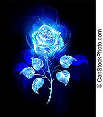 kék, rózsa, égető