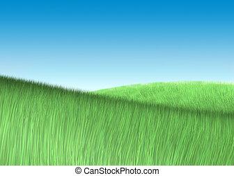 kék, sky., mező, zöld, alatt, friss, fű