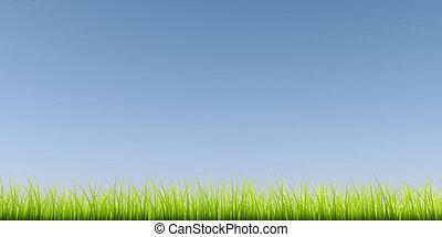 kék, sky., világos, zöld háttér, fű