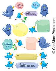kék, szín, panama, madarak