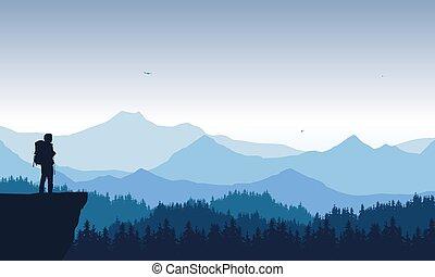 kék, toboztermő fa, elhagyott, kiránduló, hegy, birds., tető, repülés, ég, ábra, álló, látszó, gyakorlatias, vektor, erdő, alatt, völgy, táj