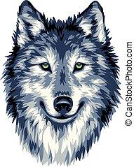 kék, vad, farkas