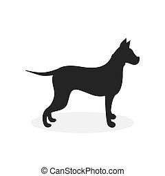kép, fehér, labrador, háttér, vektor, kutya