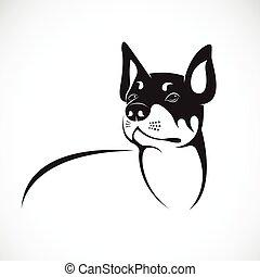 , kép, kutya, háttér., vektor, fehér, -e, design.