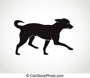 , kép, kutya, háttér., vektor, kutyus, fehér