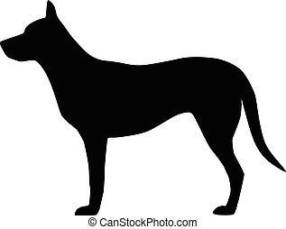kép, vektor, kutya, háttér, fehér