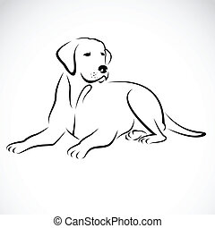 kép, vektor, labrador, kutya