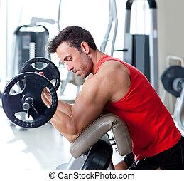 képzés, súly, tornaterem felszerelés, sport, ember