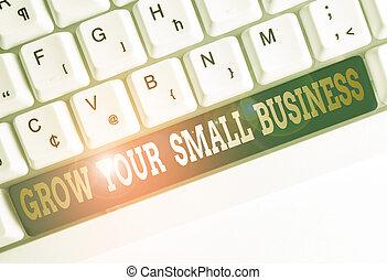 készpénz, üres, nő, fogalmi, dolgozat, felül, space., másol, generates, jegyzet, pénzt keres, aláír, szöveg, fénykép, billentyűzet, business., háttér, kicsi, folyik, kiállítás, pozitív, -e, kulcs, fehér, társaság, számítógép
