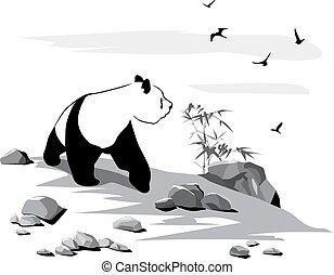 kíváncsi, panda