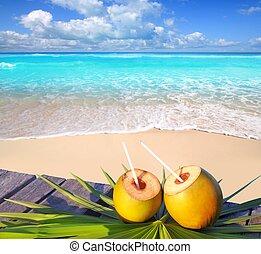 kókuszdió, caribbean tengerpart, koktél, paradicsom