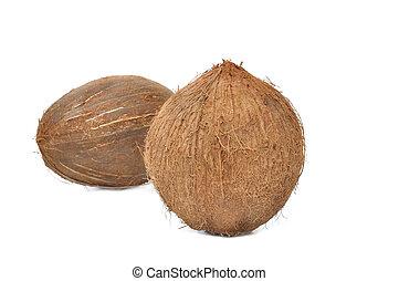 kókuszdió, white háttér