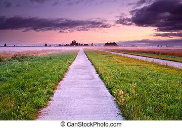 ködös, bicikli, nyár, át, kaszáló, út