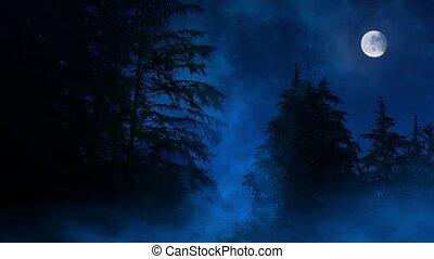ködös, eláraszt, erdő, éjszaka, hold