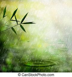 ködös, természetes, elvont, háttér, eső, forest., bambusz