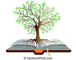 könyv, fa