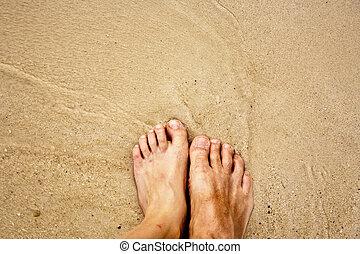 körülvett, lábak, homok, saltwater, bírság, ember