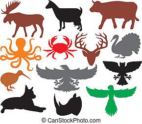 körvonal, állhatatos, állatok